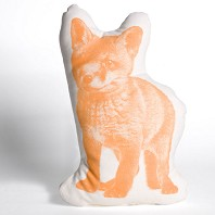 Coussin de Compagnie Fox Orange PM AREAWARE