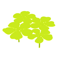 Table Bouquet Notus XL Vert Anis Mat