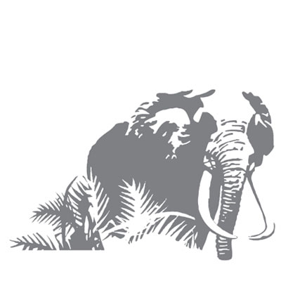 Sticker Eléphant YEDA DESIGN pour 25€