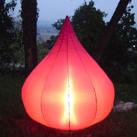 Lampe de Jardin Gonflable Figue Pourpre