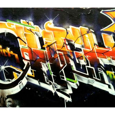 Papier Peint Graffiti Motif4 300 x 260 cm pour 359€