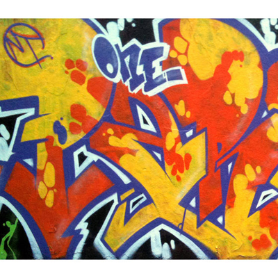 Papier Peint Graffiti Motif8 300 x 260 cm pour 359€